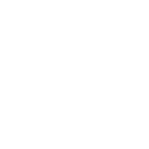 Four Faces of the Moon logo white