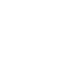 Envision Financial logo white