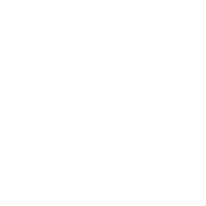 Mr Mikes logo white